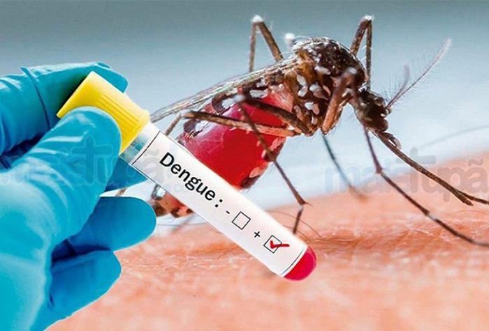 Araraquara tem 41 casos de dengue confirmados e mantém ações ...